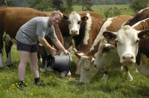 Cu ce se ocupa un fermier care detine o ferma de lapte?