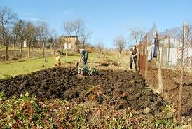 Cum sa iti usurezi muncile agricole?
