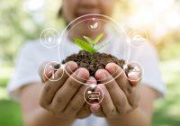 Care sunt principalele avantaje ale agriculturii ecologice?